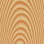 vurenhout-schipper-houtbouw-1